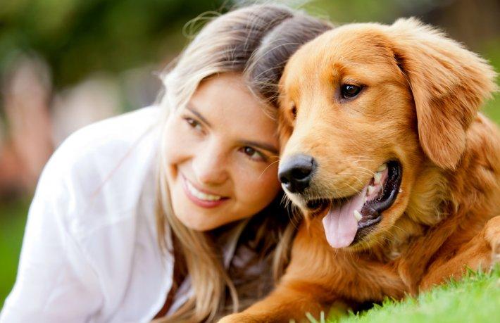 Ataşehir Köpek Eğitim Merkezi