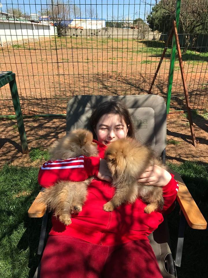Esenler Köpek Eğitim Çiftliği