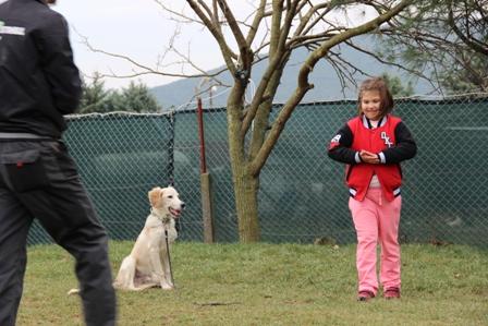Gaziosmanpaşa Köpek Eğitimi