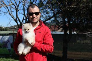Ortaköy Köpek Eğitimi